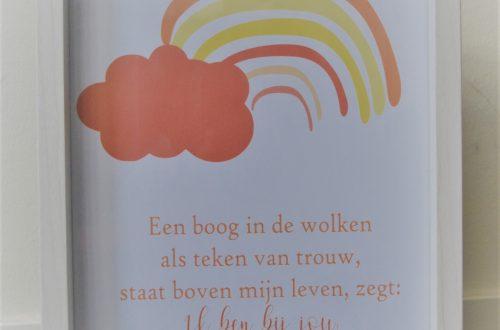 regenboog poster